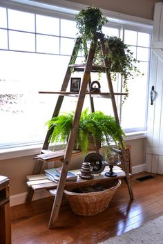 I love Funky Junk Donna's idea of making an old family ladder (or a great thrifting find) into a plant stand. Now, where did I put Grampa's old ladder?