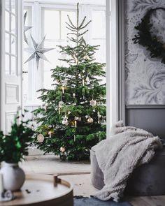 Otroligt vacker gran // Love this Christmas tree ❤🎄🎄🎄❤ repost: Hygge Christmas, Christmas Mood, Simple Christmas Trees, Christmas Tree Inspiration, Christmas Interiors, Scandinavian Christmas, Beautiful Christmas, Christmas Decorations, Christmas Crafts