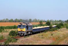 RailPictures.Net Photo: 4062 003-1 Hungarian State Railways (MÁV) M62 at Börgönd, Hungary by Tamás Rizsavi