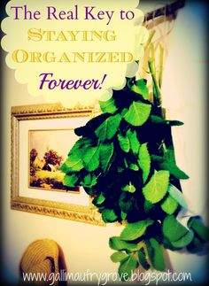 Gallimaufry Grove: The REAL Way To Stay Organized - I've finally discovered how to stay organized forever.  Now I am working toward achieving it...