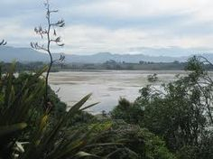 tauranga New Zealand, Beach, Places, Water, Outdoor, Gripe Water, Outdoors, The Beach, Beaches