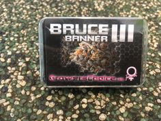 Bruce banner ||| Shops, Bruce Banner, How To Dry Basil, Herbs, Food, Hemp, Tents, Meal, Essen
