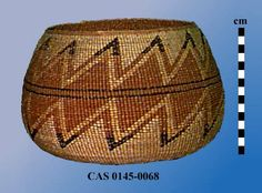 Globose basket with flat base, rounded sides, and wide mouth; Woven primarily in plain twining with 3-strand twining on base and rim; Design is in bear grass and woodwardia and maidenhair ferns and includes plain, concentric bands on base and elaborate zigzag on sides comprising band of contiguous diamonds bordered by zigzags whose points are in contrasting color (snake nose pattern). Dimensions (cm)Height = 14.3, Rim Diam = 17.5, Max Diam = 23.7