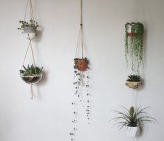 Double or Triple Flexible Adjustable Fits All - Modern Hanging Planter by Greenarium on Etsy