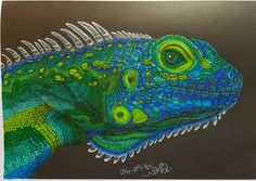 From Tim Jeffs' Intricate Ink Animals in Detail. Coloured by me.