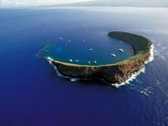 Molokini @ Maui, Hawaii  Snorkled here, swam with green sea tutles, literally a foot away from me, so curious and friendly