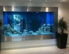 An aquarium is a pleasant manner of displaying that you simply love nature and that you've a need to deal with it. A house aquarium is one of the best. Unique Fish Tanks, Large Fish Tanks, Cool Fish Tanks, Amazing Fish Tanks, In Wall Fish Tank, Aquariums Super, Amazing Aquariums, Tanked Aquariums, Aquarium Design