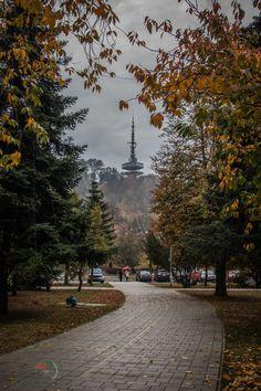Czech Republic, Hungary, Roads, Austria, Poland, Ava, Cities, Sidewalk, Tower