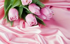 Pink Tulips Wedding Bouquet HD Picture