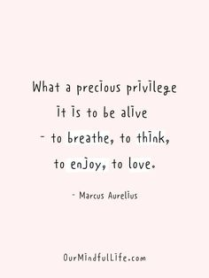 Alive Quotes, Motivacional Quotes, Daily Quotes, Words Quotes, Reason Quotes, Sayings, Crush Quotes, Self Love Quotes, Great Quotes