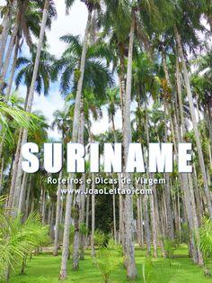 Visitar Suriname – Roteiros e Dicas de Viagem
