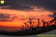 Vanessa Bernal #YosoyNaturaleza. Nikon D3100