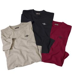 Lot de 3 Tee-Shirts Essential Basics #atlasformen #formen #discount #shopping #ootd #outfit #fashion #timeless #instafashion #casual #style #travel #voyage  #winter #hiver