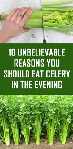 Amazing Remedies Celery is super healthy and we still do not eat it that often. In this article we give you 10 amazing reasons to eat celery in the evening? You better finish reading this article. Health And Beauty, Health And Wellness, Health Fitness, Wellness Tips, Mental Health, Natural Cures, Natural Healing, Holistic Healing, Natural Treatments
