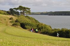 On the coast path at Mawnan Smith in Cornwall. Photographer Deena Drees, Cornwall. I must try this walk, it looks lovely