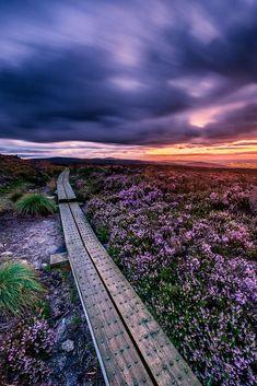 Three Rock Mountain, Dún Laoghaire, ڿڰۣ Rathdown county, Ireland.