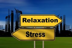 Quando procuramos um tratamento para a ansiedade eficaz devemos pensar também nas terapias naturais porque tratam as causas e não apenas os sintomas.