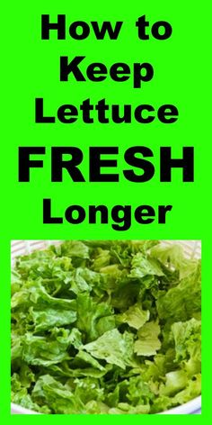Never buy bag lettuce again! Source by ketosheet Ww Recipes, Great Recipes, Favorite Recipes, Healthy Vegetable Recipes, Vegetable Dishes, Fruit And Veg, Fruits And Veggies, Vegetables, Cooking 101