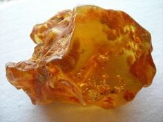 Amber containing petrified termites within it, taken by Megan on Flickr by estela