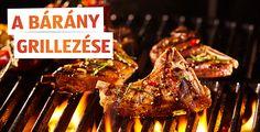 Tudjuk, hogy olvasóink között a húsimádókon kívül vegetáriánusok is lehetnek, sőt sokan kedvelhetik a tenger gyümölcseit is. Gond egy szál se! Egy grillsütőn mindenféle isteni fogás pillanatok alatt elkészíthető. De hogyan tudja a legtöbben kihozni a steakből? Miként lesz minden ínyenc számára tökéletes élmény a grillezés? Olvasd el weboldalunkon! Izu, Minden, Grilling, Meat, Food, Crickets, Essen, Meals, Yemek