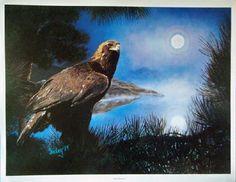 Eagle Print - Fine Art S/N