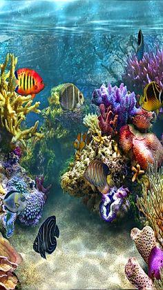 Underwater Wallpaper, Underwater Painting, Ocean Wallpaper, Underwater Life, Sea Creatures Drawing, Weird Sea Creatures, Ocean Creatures, Sea Turtle Pictures, Wallpaper Nature Flowers