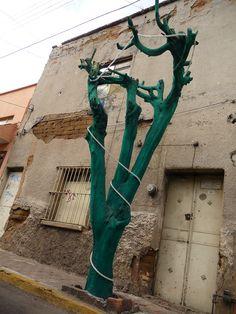 Díganme exagerado, pero en verdad les puedo apostar que algún día este árbol tuvo un color más verde que el de ahora... :(