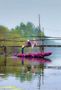 Việt nam quê hương thương nhớ