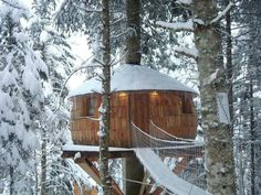 Love this tree house! Warm and cozy.