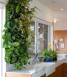 Make a lush indoor vertical garden in an instant with these genius and innovative wall pockets. Affordable, too.