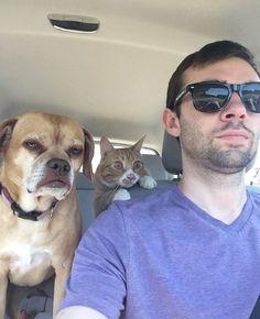 Driving buddies...