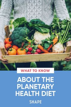 The planetary health diet could be the key to improving the health of Earth *and* the people who inhabit it. #healthyeating #ecofriendly #planetary Easy Healthy Recipes, Diet Recipes, Food Policy, Food System, Workout Plans, Base Foods, Health Diet, Diet Tips, Healthy Lifestyle
