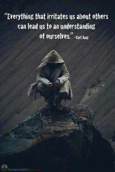 segala sesuatu yang mengganggu kita tentang orang lain dapat membawa kita untuk memahami diri kita sendiri. carl jung