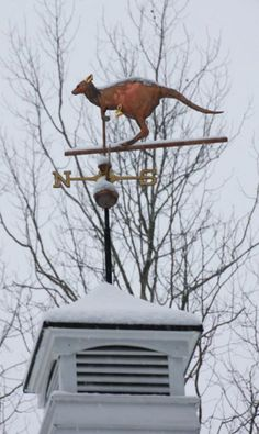 weathervanes from around the world - Google Search