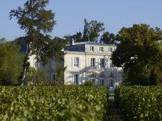 Vue du Château Belgrave, Grand Cru Classé Haut-Médoc et Vignoble Dourthe depuis les vignes - www.dourthe.com