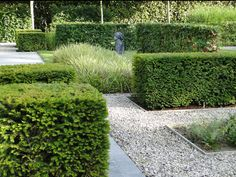 .Note #3:  Keep existing yew hedges and add more for directionality and to create gateways.