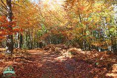 треккинг в испании - #активный_туризм #испания #осень #природа #горы