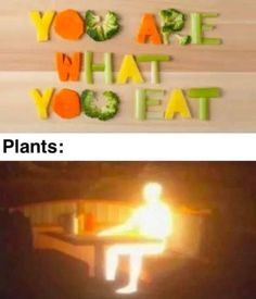 Absorb Stupid Funny Memes, Funny Relatable Memes, Hilarious, Funny Stuff, Best Memes, Dankest Memes, Science Memes, Funny Science, Jokes