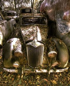 Since 1933, thousands of vintage cars were piled up in the biggest car cemetery of its kind in Europe. The collection of old-timers dated back to the 1920s. They were hidden in the woods about 10 miles outside Bern, Switzerland.