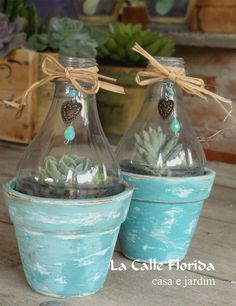 Succulents In Containers, Succulents Diy, Decoupage Tins, Fun Crafts, Diy And Crafts, Tiny Garden Ideas, Aluminum Can Crafts, Garden Crafts, Garden Art