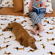 Want! Super whimsical & quirky Sausage Dog print by Australian company Castle #moderndog #favefinds #moderndogmagazine