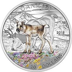 Canada's leader in buying and selling collectible coins and banknotes, precious metals and jewellery . We offer Royal Canadian Mint collectible coins and provide selling values on coins and paper money. Mint Coins, Silver Coins, Canadian Coins, Valuable Coins, Foreign Coins, Commemorative Coins, Coin Collecting, 1 Oz, Baby Animals