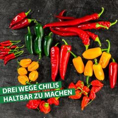 PRESERVE YOUR CHILI HARVEST Our 'dragon fire' chilli plants promise a rich harvest. Usually much more than you can eat at once - or should! Perfect Pizza, Good Pizza, Chicken Tetrazzini Recipes, Grilled Pizza Recipes, Chilli Plant, Crispy Pizza, Chili Spices, Homemade Spices, Chicken Spices