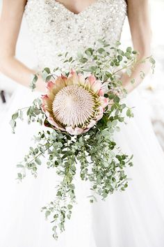 Cinderella Styled Shoot by Samantha Jackson Lythwood loves this gorgeous Protea bridal bouquet.za Contemporary Cinderella Styled Shoot by Samantha Jackson Flor Protea, Protea Bouquet, Gift Bouquet, Simple Wedding Bouquets, Protea Wedding, Flower Bouquet Wedding, Bridesmaid Bouquet, Floral Wedding, Bridal Bouquets