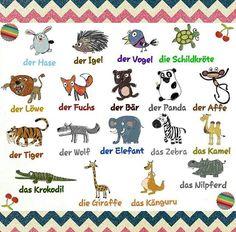 111 best Tiere images on Pinterest | German language, Learn german ...