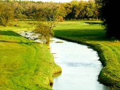 Oudemolensche Diep Drenthe. De natuur in Drenthe is schitterend. http://www.naturescanner.nl/europa/nederland/drentsche-aa