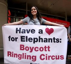 Boycott Ringling Circus. (And any other circus with animals)
