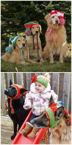 The Cutest Crochet Christmas Dog Hats - pets - Dog Christmas Clothes, Dog Christmas Gifts, Crochet Christmas, Dog Christmas Outfits, Christmas Hats, Christmas Scenes, Christmas Costumes, Teddy Bear Shop, Knitted Teddy Bear