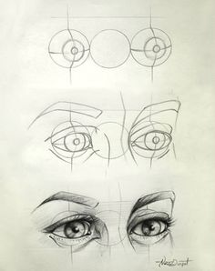 AnatoRef | Eyes Top Image Row 2: Left ( Normand Lemay ),...