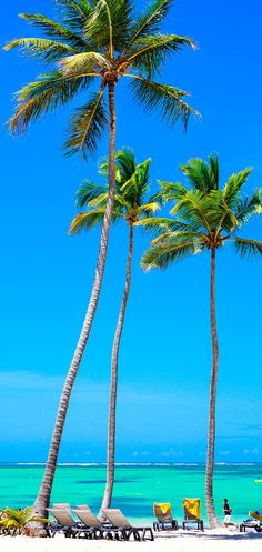Punta Cana - The resort destination has many facilities that cater for visitors who want to stay active or are interested in activities like zip-lining, kite-boarding, windsurfing, fishing, kayaking and sailing.